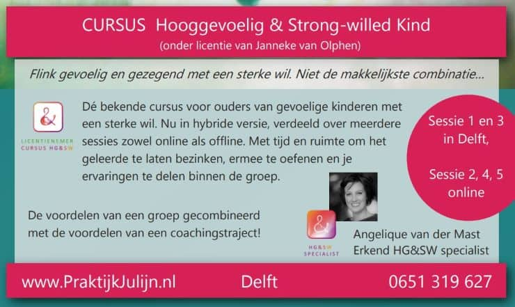 Cursus Hooggevoelig & Strong-Willed DELFT